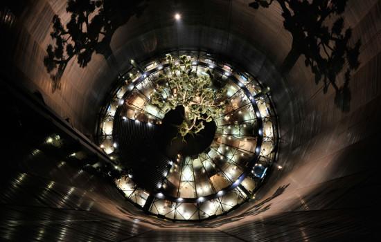 Von oben fotografiere Baummontage  im Gasometer mit beleutetem Boden.
