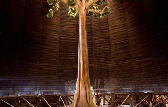 Von vorne fotografierte Baummontage im Inneren des Gasometers
