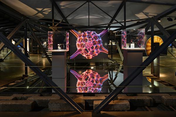 Blick in dei zweite Ausstellungsebene unterhalb der Manege