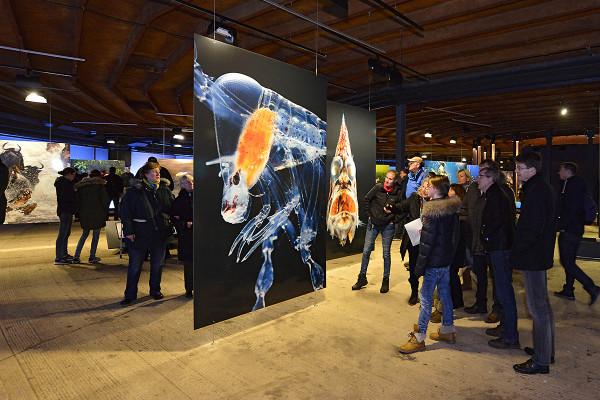 Einblick in die untere Ausstellungsebene des Gasometers mit großformatigen Fotos